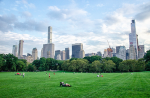 8 Ways to Relax in New York City