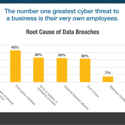 Employees – Potential Threat and First Line of Defense against Data Breaches