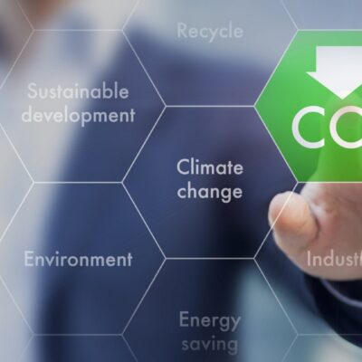 How Businesses Can Address Climate Change